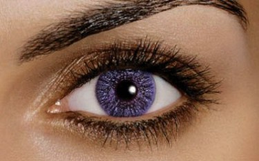 FreshLook Colors Violet